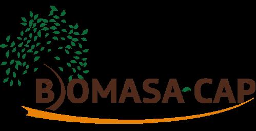 Logo Biomasa-AP