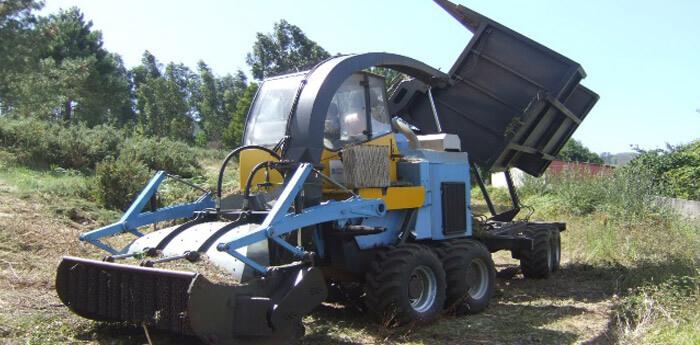 Resultados biomasa