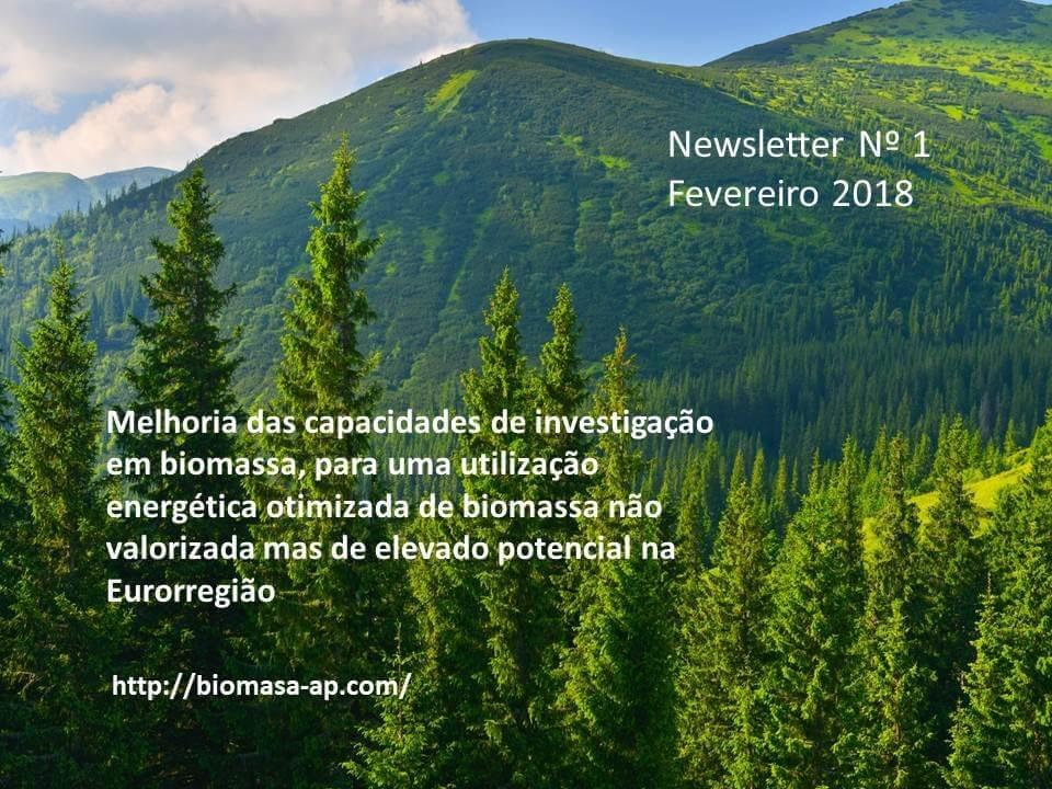 Newsletter 1 febrero Bomasa-ap